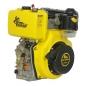 Двигатель дизельный ДВЗ-420 ДШЛЕ -