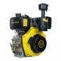 Двигатель дизельный 6 л.с. ДВУ-300ДШЛЕ (6 шлицов вал 25 мм, электростартер) -