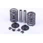 Клапанный механизм (2 втулки, 2 пружины, 2 тарелки, 4 сухаря ) R185/190/192 -